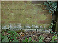SK8633 : Bench mark on Belvoir Road railway bridge by Alan Murray-Rust