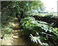 SK3097 : Path to Hannah Moor by Neil Theasby