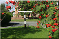 SJ5947 : Wrenbury Village Green by Stephen McKay