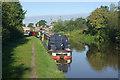 SJ5360 : Shropshire Union Canal, near Bates Mill Bridge by Stephen McKay