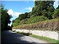 ST3594 : Redundant stile, Llwyncelyn boundary wall by Christine Johnstone