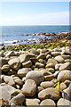SW4222 : St Loy's Cove beach of the Coastal Path by Peter Skynner