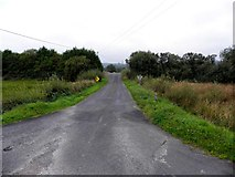 H1318 : Road at Greaghnadoony by Kenneth  Allen