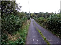 H1319 : Road at Corrachomera by Kenneth  Allen