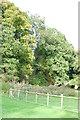 SJ7482 : Dairy Wood, Home Farm, Tatton Estate by Trevor Harris