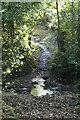 SW7848 : Bridlepath crosses stream by Elizabeth Scott