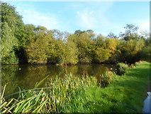 SU9890 : Layter's Green pond by Bikeboy