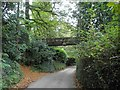 SW7730 : Footbridge across Penjerrick Hill by Steve  Fareham