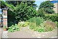 TQ3679 : Herb Garden, Surrey Docks Farm by N Chadwick