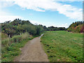 SZ8796 : Path by Pagham Harbour by Robin Webster