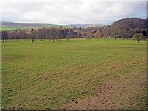 SK2672 : North end of Chatsworth Park by Trevor Rickard