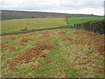 SK2771 : Meadows at Dobb Edge by Trevor Rickard