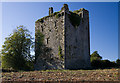 W4265 : Castles of Munster: Clodah, Cork - revisited (1) by Mike Searle