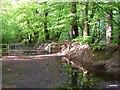 SY1396 : Muddy Lane by Derek Harper