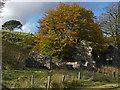 SX6277 : Cherry Brook valley : Week 45