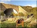 SJ8082 : River Bollin Runway Tunnel, Manchester Airport by David Dixon