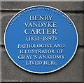 Photo of Henry Vandyke Carter blue plaque