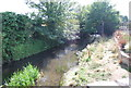 TQ5174 : River Cray by N Chadwick