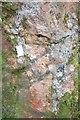 SW9958 : Tresayes Pegmatite by Ashley Dace