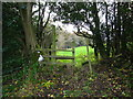 SJ2754 : Stile between grazing fields by Maggie Cox