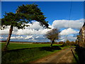 SU8002 : Road past Lowerhone Farm with wonderful clouds : Week 50