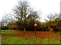 TL4346 : Thriplow village sign and autumn leaves by Bikeboy