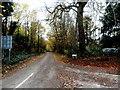 TL4346 : Farm Lane, Thriplow by Bikeboy