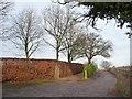 SJ8260 : Parallel entrances, north side of Child's Lane by Christine Johnstone