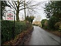 SJ8161 : Moss Mere, Brookhouse Green by Christine Johnstone