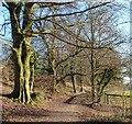 SP9512 : Ridgeway footpath junction : Week 52(part2)
