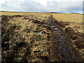 SE1342 : Moorland Path near Two Stoops by Chris Heaton