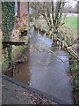 ST5563 : The Winford Brook as it enters Littleton Mill by Dr Duncan Pepper