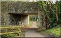 J3067 : The Lagan towpath near the Drum Bridge, Dunmurry (March 2014) by Albert Bridge