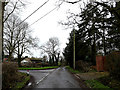 TM2897 : Littlebeck Lane, Kirstead by Adrian Cable
