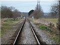 TL1197 : Nene Valley Railway heading to Wansford by Richard Humphrey