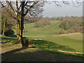 TQ0249 : Guildford Golf Course by Alan Hunt