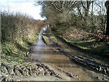 SU9397 : A waterlogged Mop End Lane by Peter