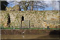 TQ5846 : Tonbridge Castle Walls by N Chadwick