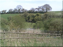 SP9504 : White Hawridge Bottom by Peter