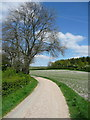 TL1230 : The Chiltern Way on the driveway to Pegson Common Farm by Humphrey Bolton