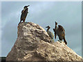 SD4264 : Cormorants close up, Stone Jetty, Morecambe by Karl and Ali