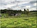 SJ7582 : Tatton Park (Northern End) by David Dixon