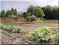 SJ7481 : Vegetable Garden at Tatton Park by David Dixon