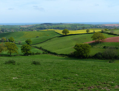SY0584 : Hayeswood Lane in the valley by Chris Gunns
