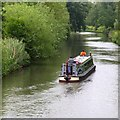SP5005 : Narrow boat on the River Thames : Week 21