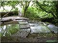 ST5769 : Three steps across by Neil Owen