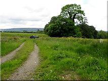 G9523 : Cavan Townland by Kenneth  Allen