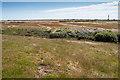 TR0817 : Landscape near Dungeness by Julian P Guffogg