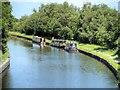 SJ7099 : Bridgewater Canal at Astley Green by David Dixon
