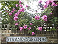 TQ1977 : Old road name sign with roses, Strand on the Green : Week 24